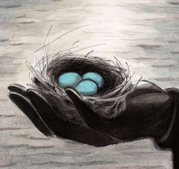 Hannah Munsey, Blue Egg Illustration. Pencil Ink Wash Watercolor Art Robin Nest
