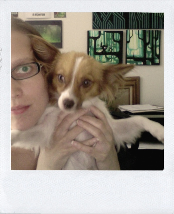 the August Break polaroid image of a Papillon puppy