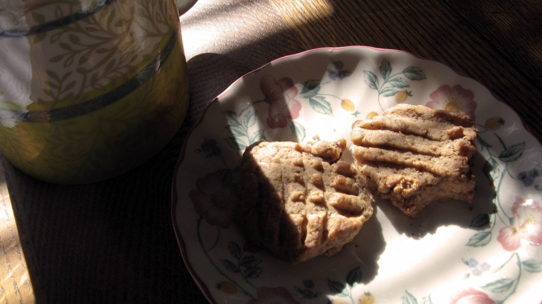 mug and cookies on saucer in afternoon light with shadow
