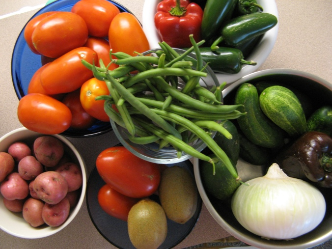 plum tomatoes, new red potatoes, kiwis, poblano peppers, cubanelle peppers, green beans, white onion, cucumbers - farmers market produce