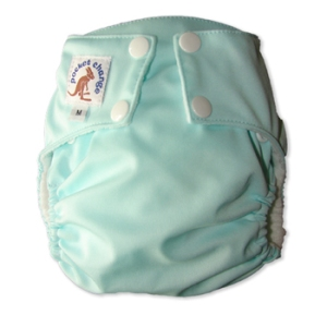 Pocket Change Cloth Diaper