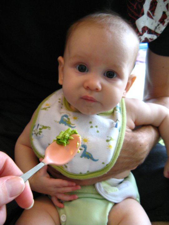 Introducing baby to solids -- photo of baby Aveline ready to take her first bite of avocado at five months old