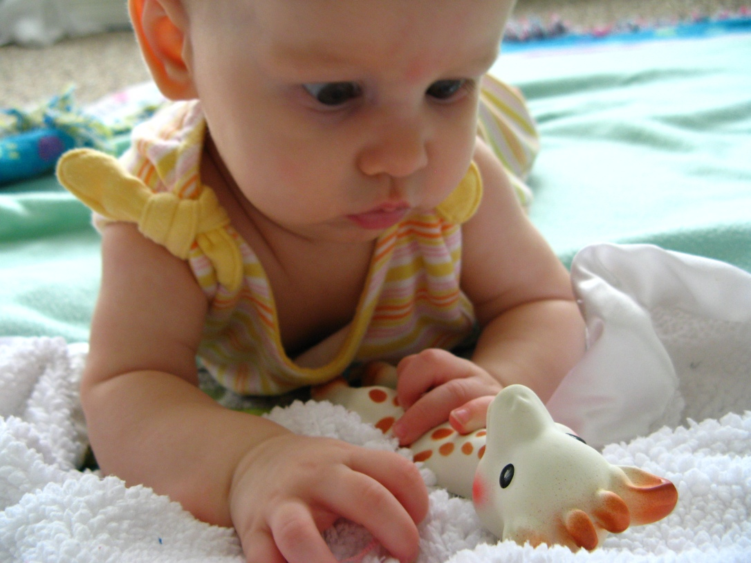 Aveline meets Sophie the Giraffe