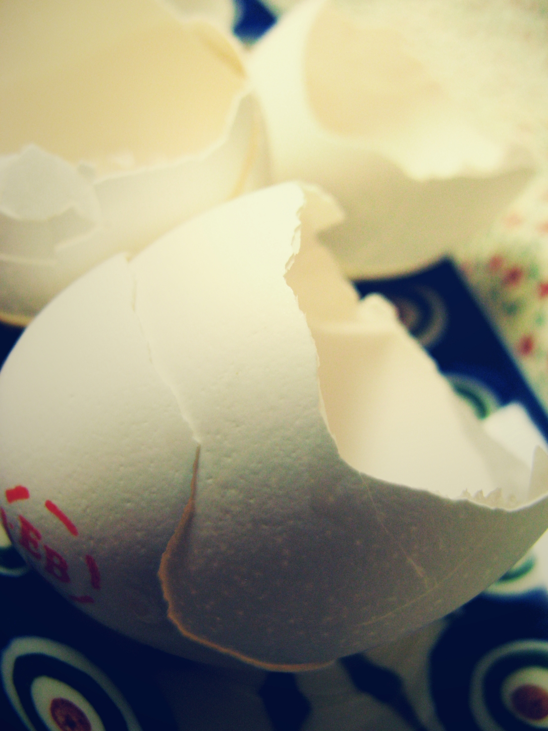 Interesting Litter - August Photo Challenge - Day 4 - The August Break - Photo a Day - Broken Cracked Egg Shells in Soft Light