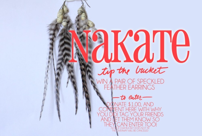 The Tipping Bucket - Nakate FUndraiser - Speckled Feather Earrings Giveaway