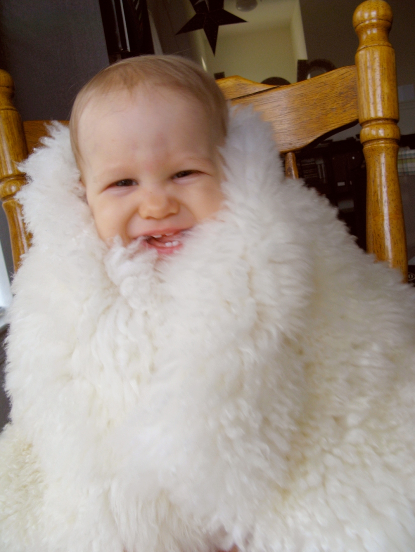 Aveline wrapped in sheepskin, on chair