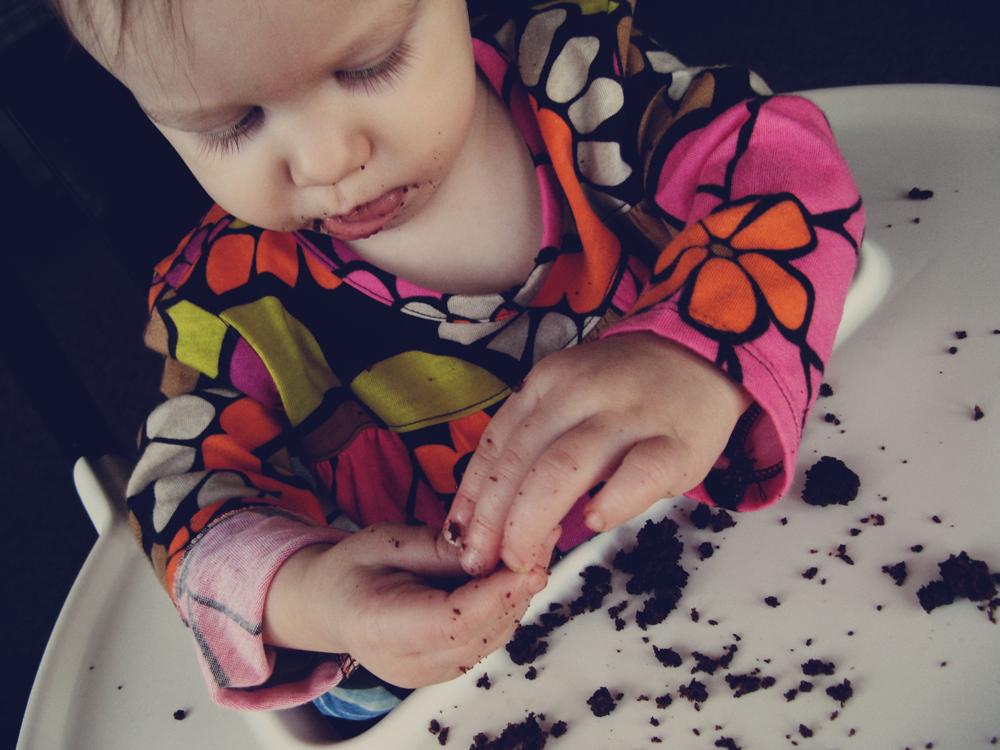 Oaxacaborn - First Birthday - Cake Crumbs