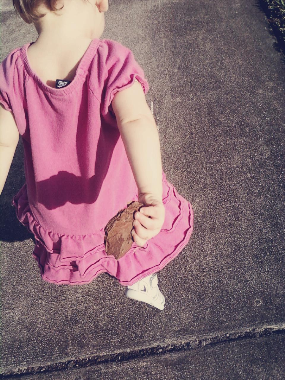 Oaxacaborn - Guest Post on The Organic BIrd Blog - Motherhood