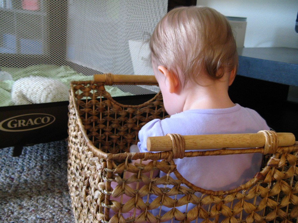 Aveline sititng in basket