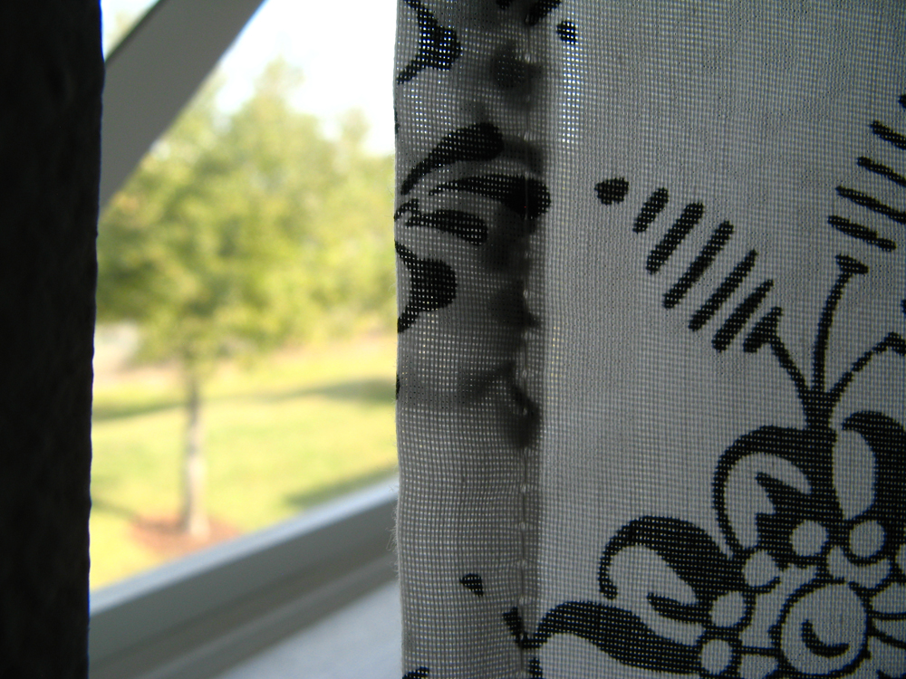 Peek behind black and white curtain out window