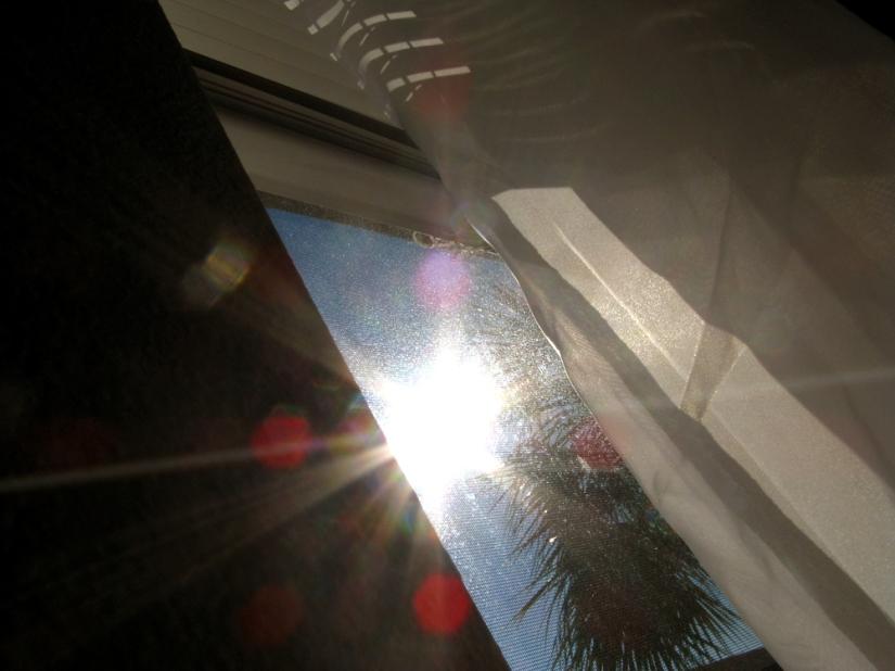 Day in Photos - Sun Flare Through Window