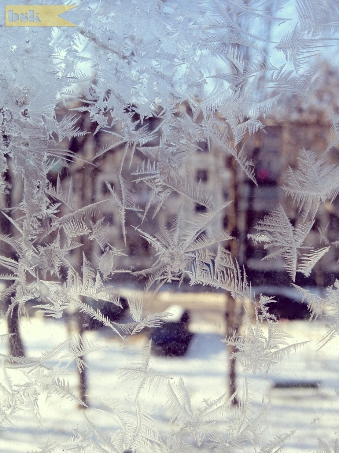 Sarah - February 2 - Ice Crystals - A Sea Apart - Two Sisters, Two Countries, Two Photos A Day