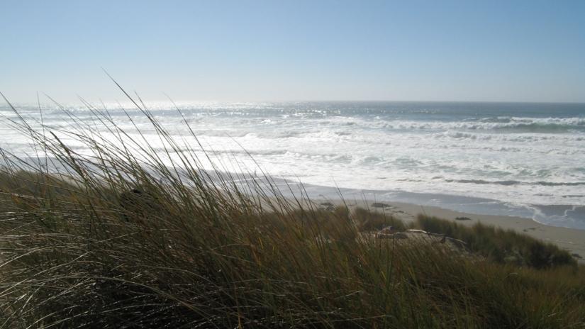 Favorite Places in Northern California - Bodega Bay