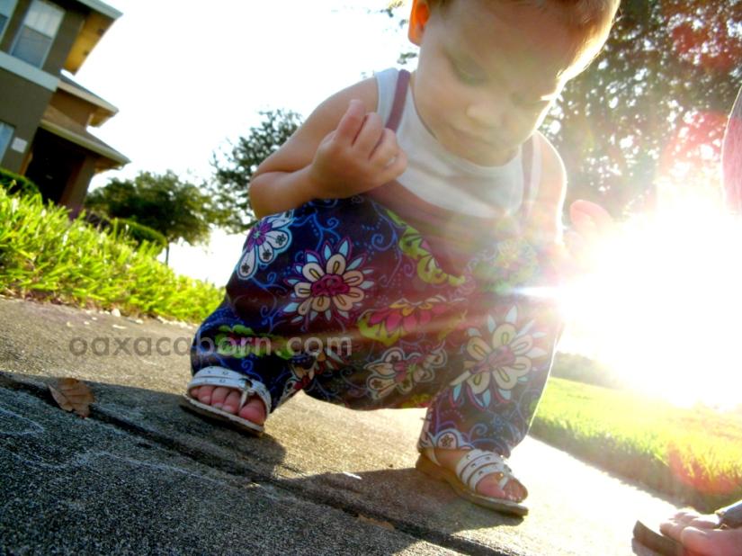 Toddler watching ants on sidewalk