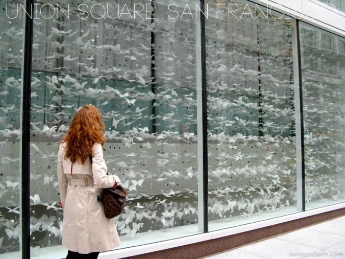 Window Display in Union Square, photo via Oaxacaborn dot com