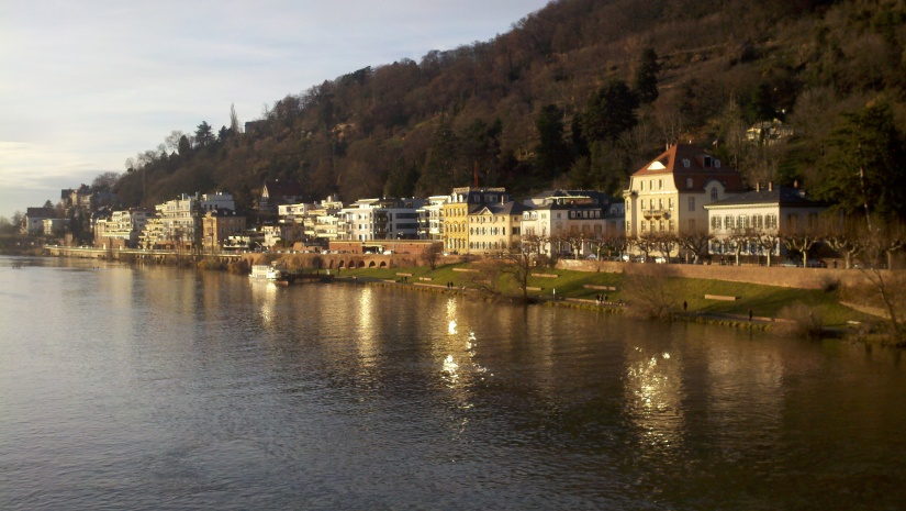 One of my favorite pictures I've taken from the Alte Brücke (Old Bridge), looking to the left over the Neckar River.