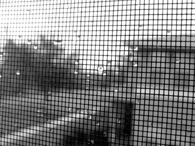 Stormy Screen, photo via Oaxacaborn dot com