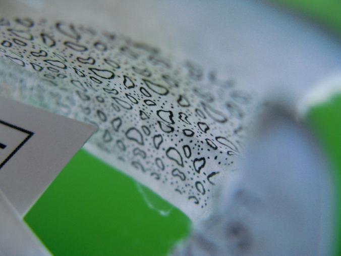 Green, Black and White - Gina Munsey, Oaxacaborn dot com