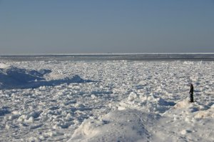 Image not from TOAST UK's catalogue - Image of blog author on Lake Superior ice in spring time with snow and open water