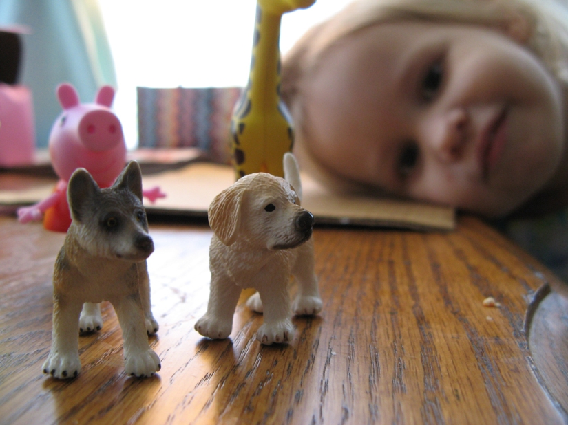 February 2013 - Aveline with animal toys