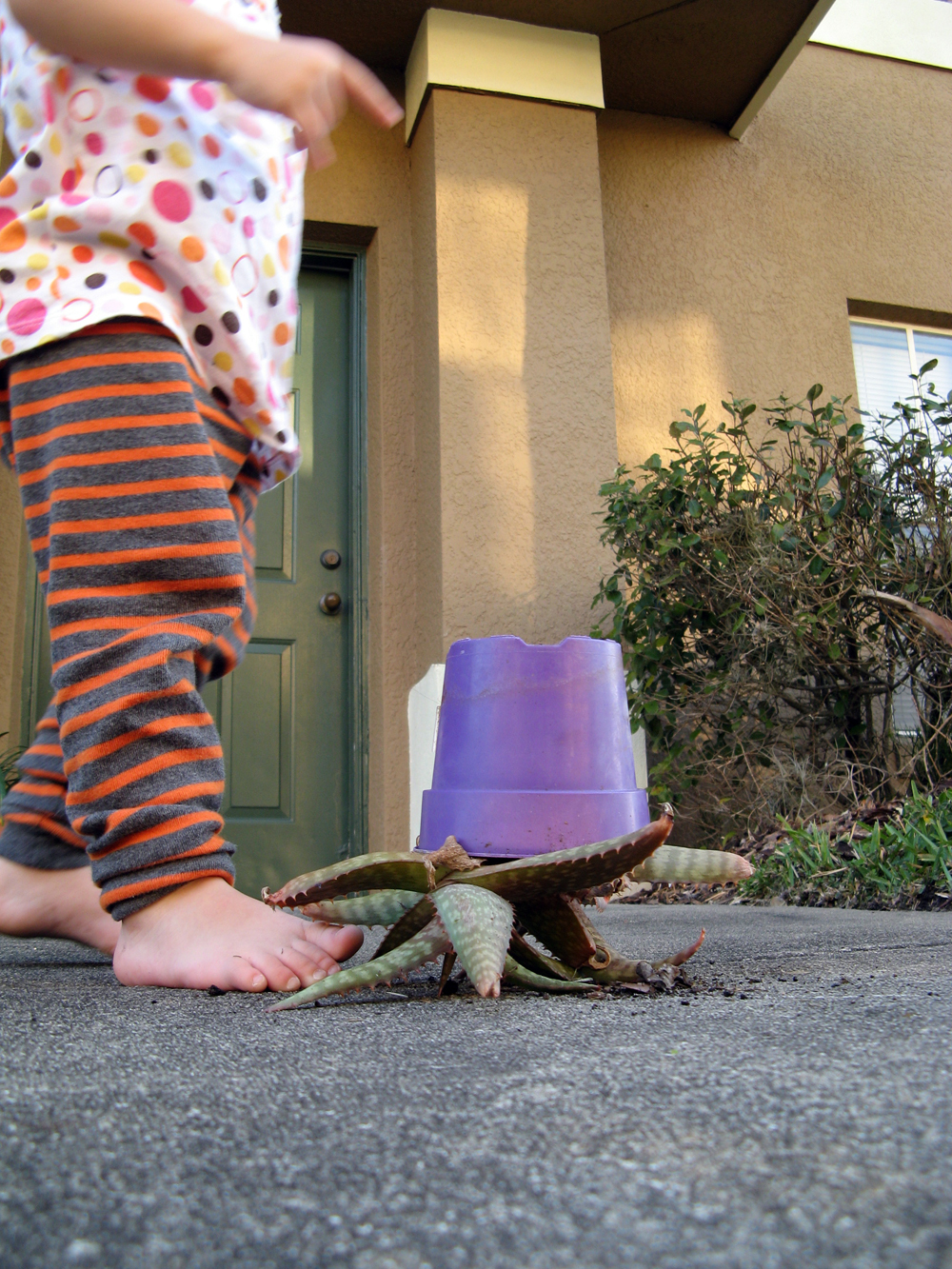 Toddler standing next to upside-down potted plant