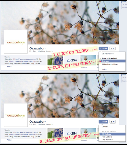 How to Change Your Facebook Settings so You See All Business Page Updates