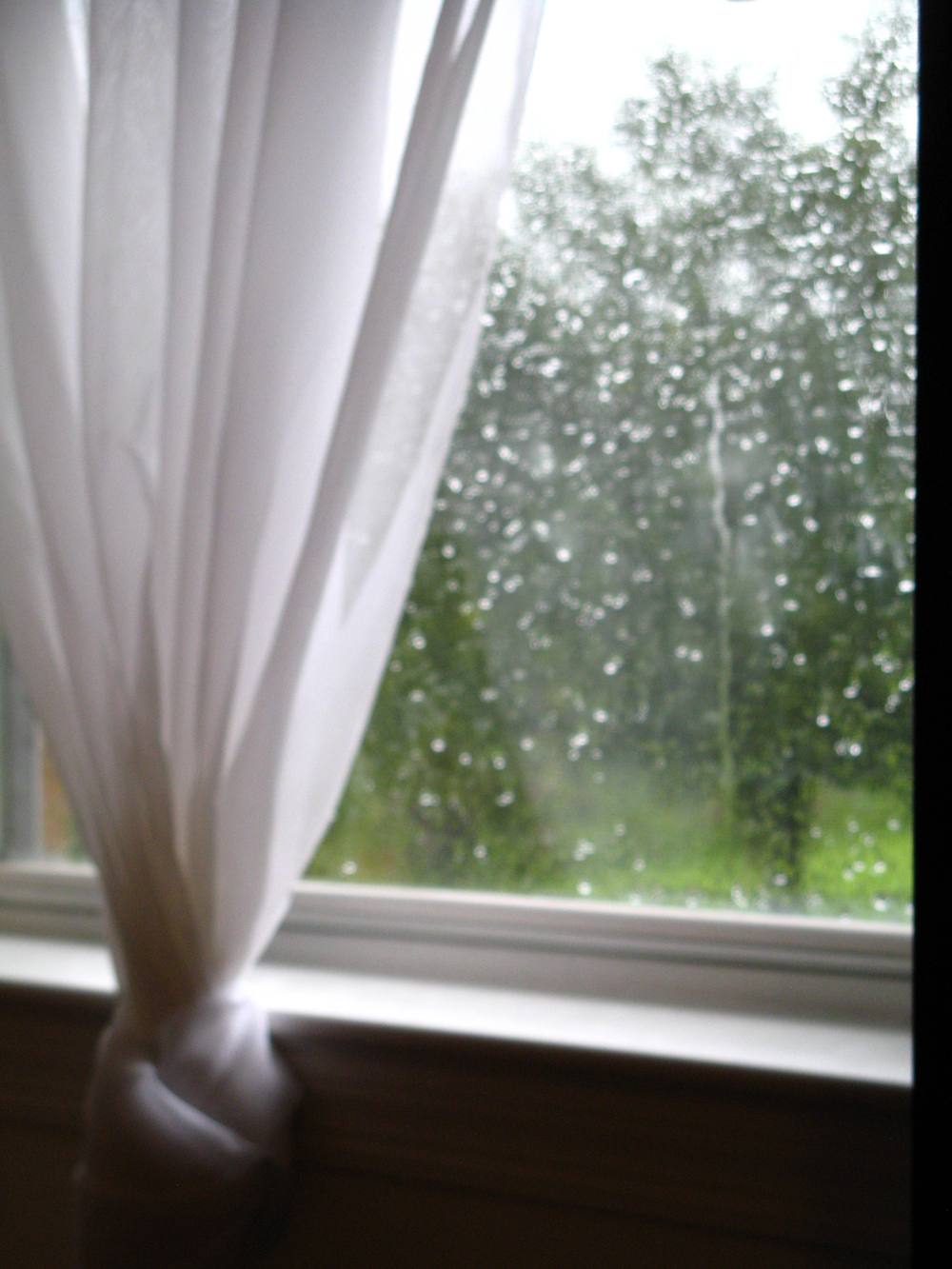 August 2013 - Rain on a window pane - White curtain and greenery