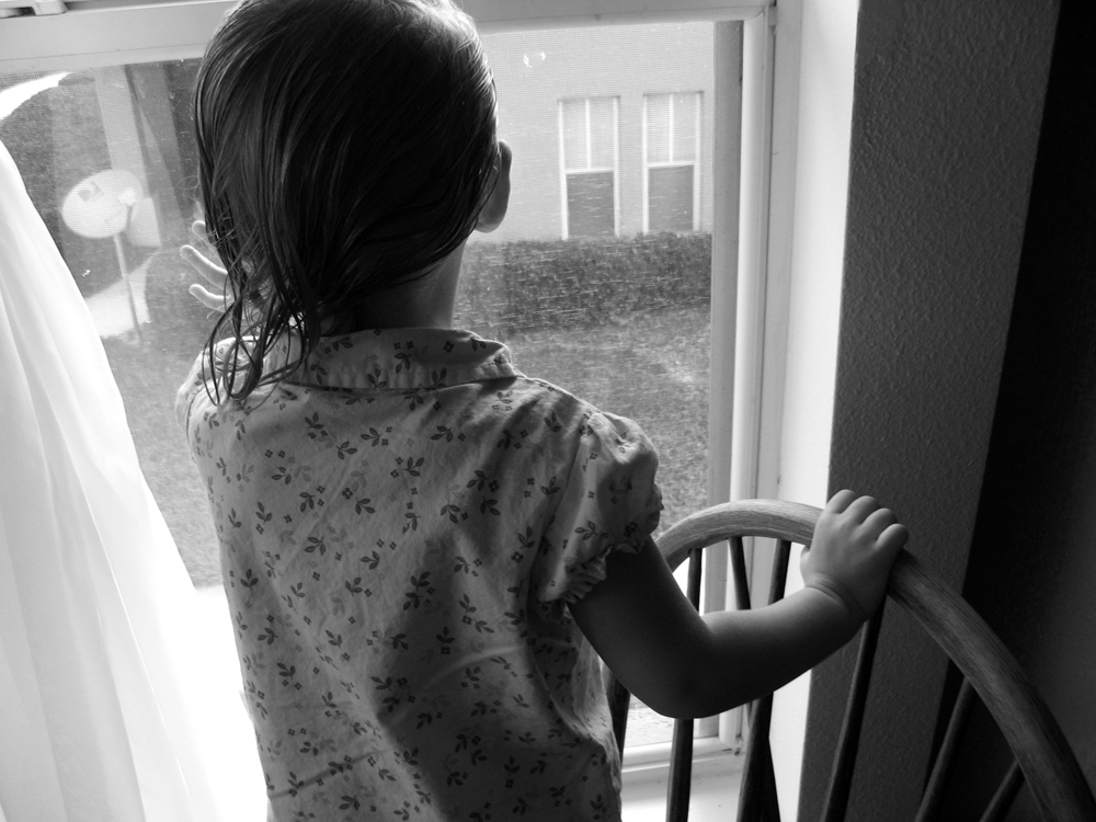 1000 px- Looking out the window in late summer