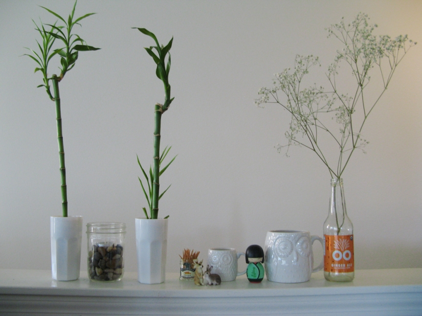 White Ceramics and Lucky Bamboo