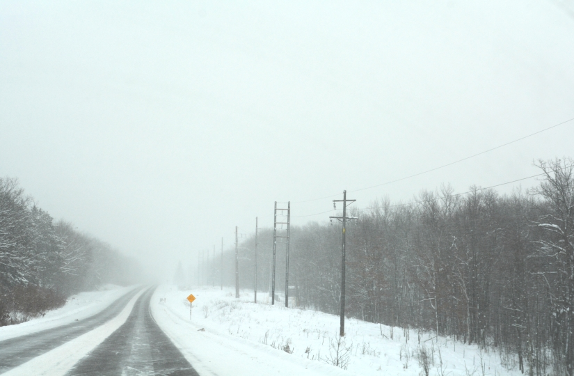 Upper Michigan Blizzard