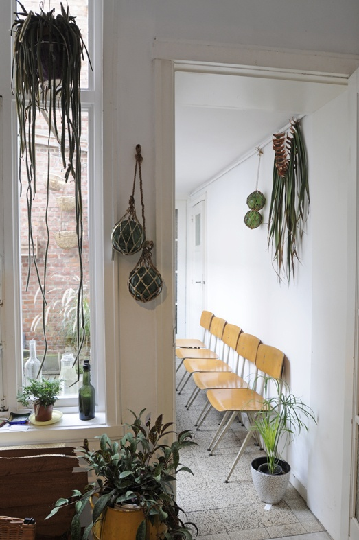 Hanging plants, plants in interior design - indoor/outdoor room via Atelier Solarshop - Monday's Pretty Things on Oaxacaborn
