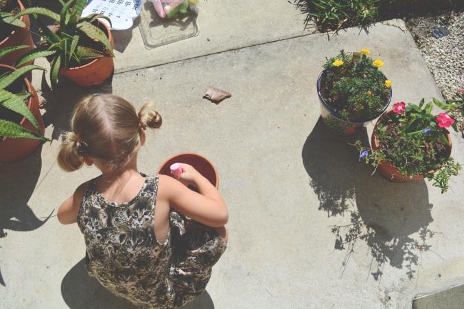 Tropical Blooms, Sidewalks of June