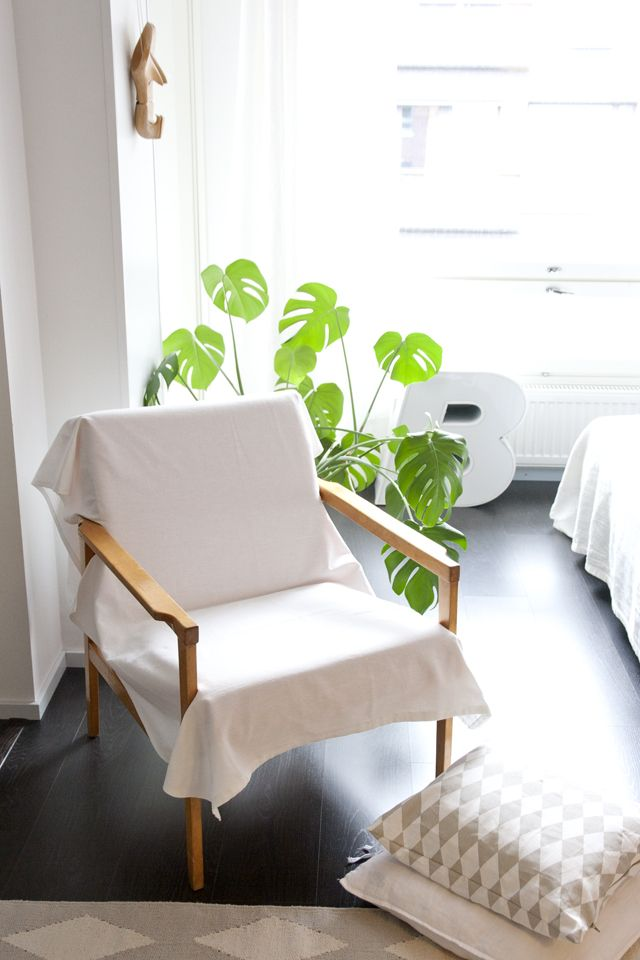 White interior with single green plant via ukkonooa