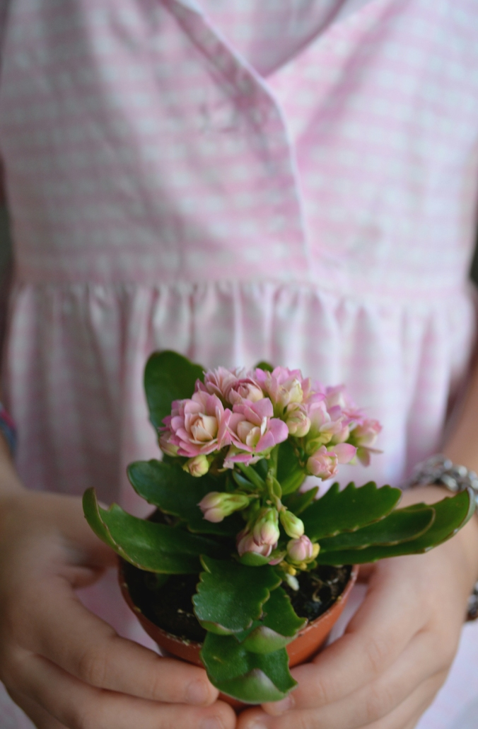 WEB_OCT14_Gingham_Dress_Holding_Flowers