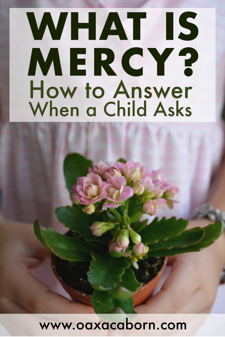 What Does Mercy Mean? How to Answer a Child's Question | How can I explain to a three year-old child the concept of mercy? I don't feel like I can reduce these mysteries to a sentence. I'm worried I'll go wrong somehow.