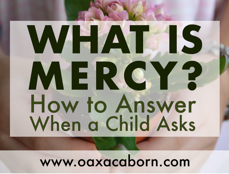 what_is_mercyFB