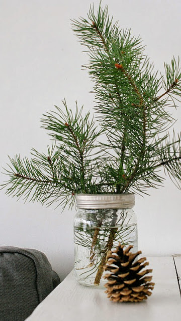 Nora Lill on Oaxacaborn's MONDAY'S PRETTY THINGS :: Decorating with Christmas Tree Branches