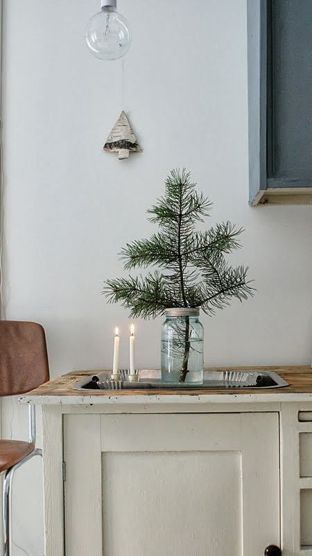Noralill Branch in Jar on Oaxacaborn's MONDAY'S PRETTY THINGS :: Decorating with Christmas Tree Branches