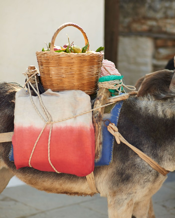 Toast UK SS15 Women Lookbook  -- Baskets on a donkey