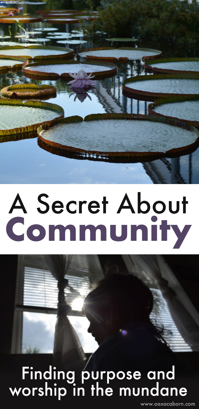 A Secret about Community: Finding Purpose and Worship in the Mundane | Oaxacaborn blog