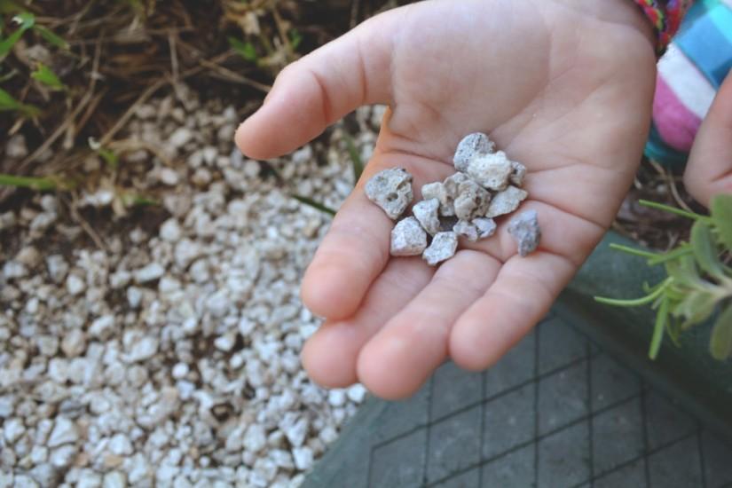 Aveline_pebbles_hand_2015