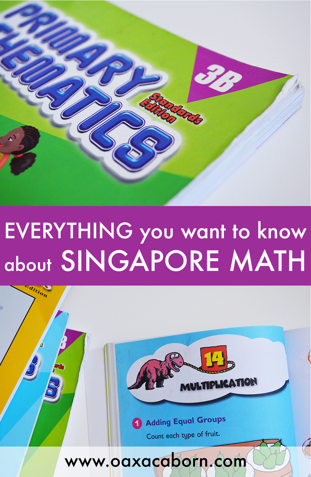 Everything you want to know about Singapore Math.