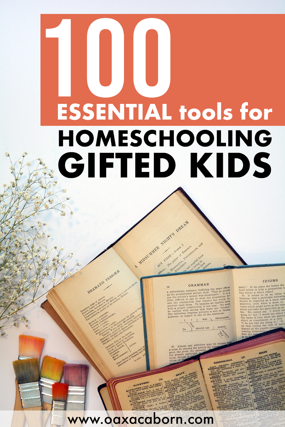 100 Essential Tools for Homeschooling Gifted Kids - by Gina of the Oaxacaborn Blog