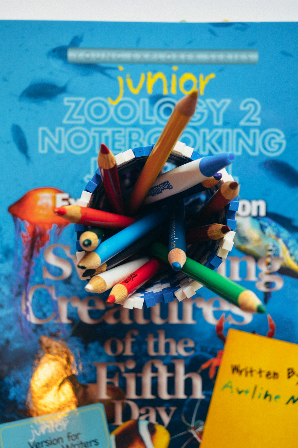 Review of Apologia Science Junior Notebooking Journal