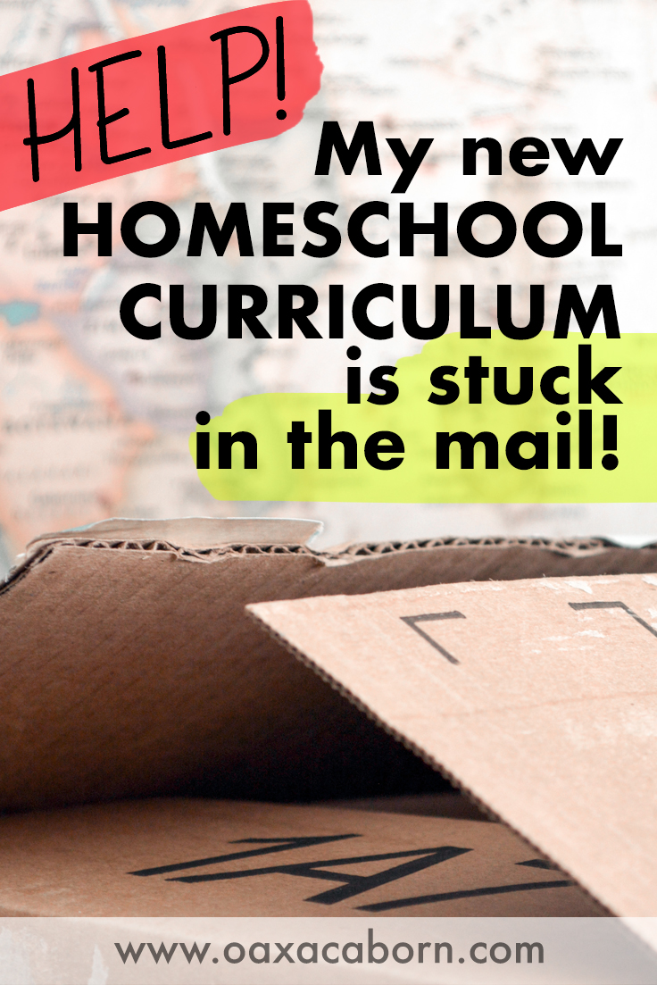 How do I homeschool if my curriculum is late or delayed? PIN IMAGE